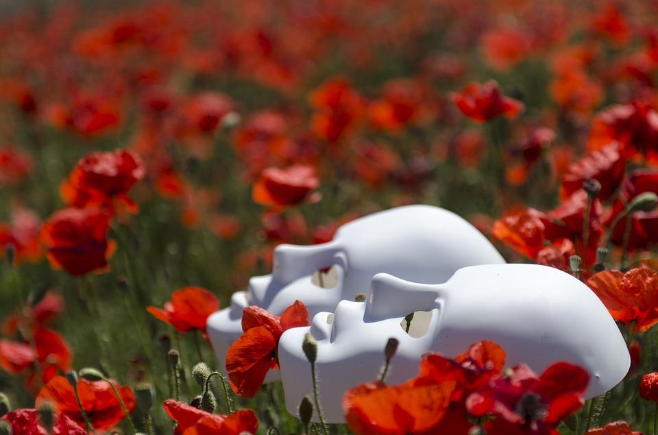 masks in poppy fields
