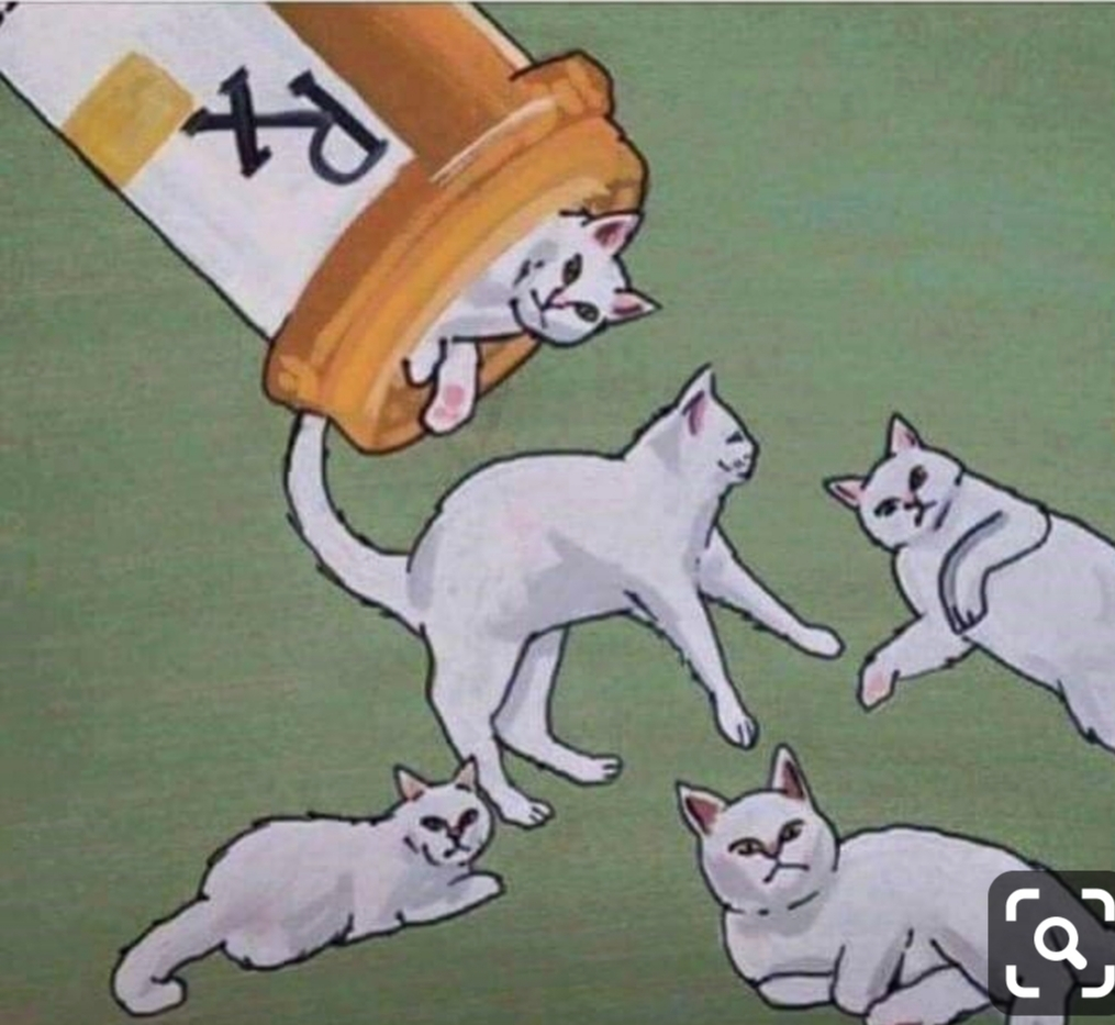 Prescription of Cats