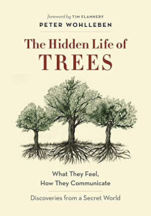 book cover The Hidden Life of Trees
